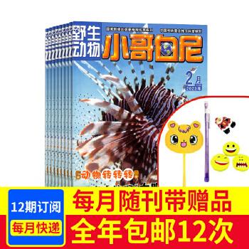 小哥白尼野生动物画报杂志儿童期刊图书2017年1月起订新刊订阅 杂志铺