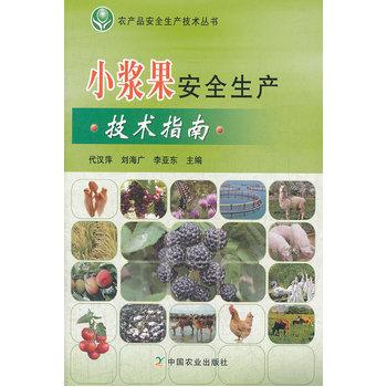 小浆果安全生产技术指南
