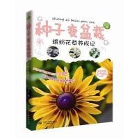 种子变盆栽――缤纷花草养成记 自在 9787517022299 水利水电出版社