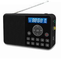 熊猫DS172 便携式插卡音箱 老人收音机 外放迷你小音箱 一键点歌