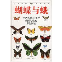 蝴蝶与蛾--自然珍藏图鉴丛书