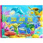 全景立体书-珊瑚礁