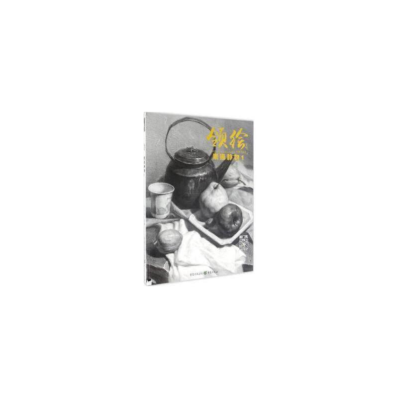 素描静物1李家友基础结构照片对临美术书