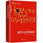 钢铁是怎样炼成的 名家名译 新课标必读 余秋雨 梅子涵鼎力推荐