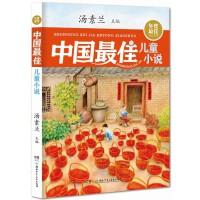年度最佳作品系列:中国最佳儿童小说
