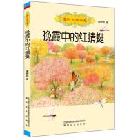 国内大奖书系-晚霞中的红蜻蜓