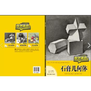 石膏几何体(全新版)/教学风暴