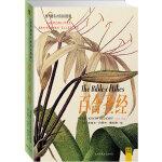 """百合圣经(2011全新修订版):以486种色彩的大师手笔,展现193种西方传说的""""百合大家庭""""菁英"""