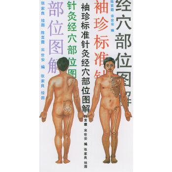 《袖珍标准针灸经穴部位图解》(陈言霞.)【简介
